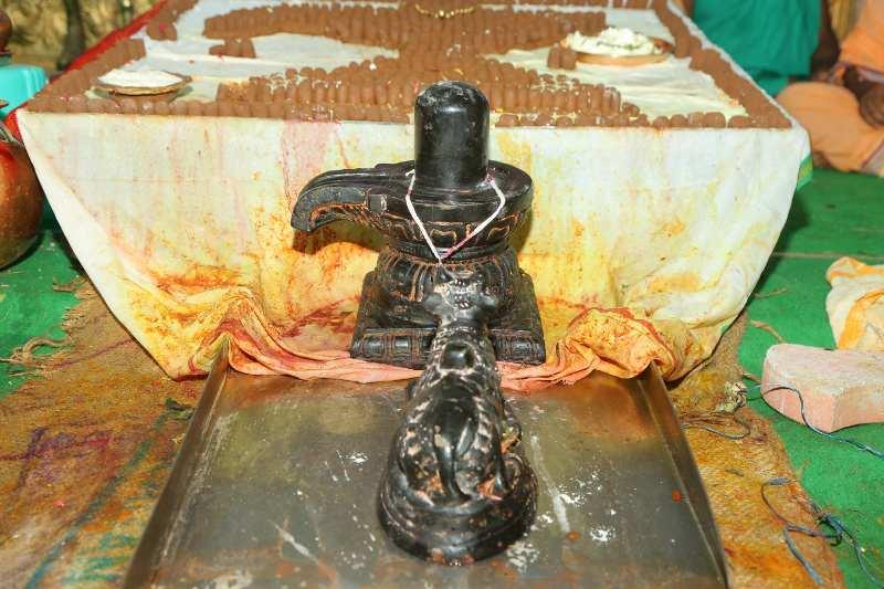 Maha Shivaratri Special Sahasra Lingarchana Sahitha Maha Pashupatha Homam March 11th 2021@ Mulugu Siddanthi Ashramam in Srisailam (38)
