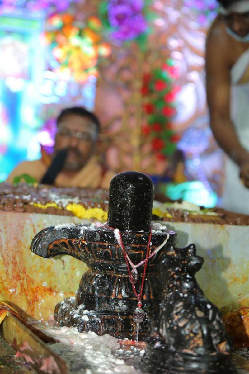 Maha Shivaratri Special Sahasra Lingarchana Sahitha Maha Pashupatha Homam March 11th 2021@ Mulugu Siddanthi Ashramam in Srisailam (64)