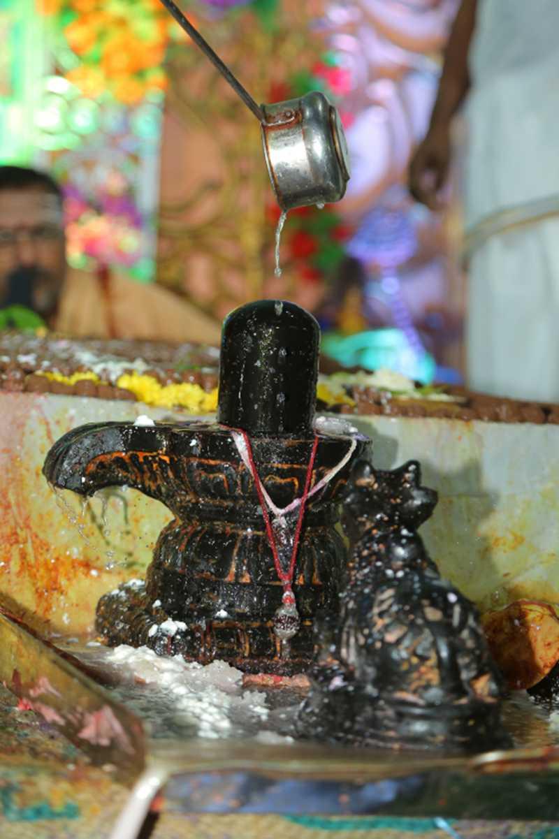 Maha Shivaratri Special Sahasra Lingarchana Sahitha Maha Pashupatha Homam March 11th 2021@ Mulugu Siddanthi Ashramam in Srisailam (65)