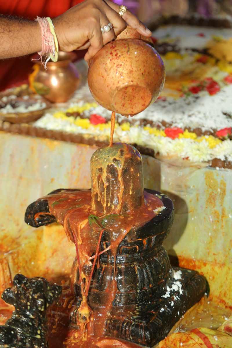 Maha Shivaratri Special Sahasra Lingarchana Sahitha Maha Pashupatha Homam March 11th 2021@ Mulugu Siddanthi Ashramam in Srisailam (75)