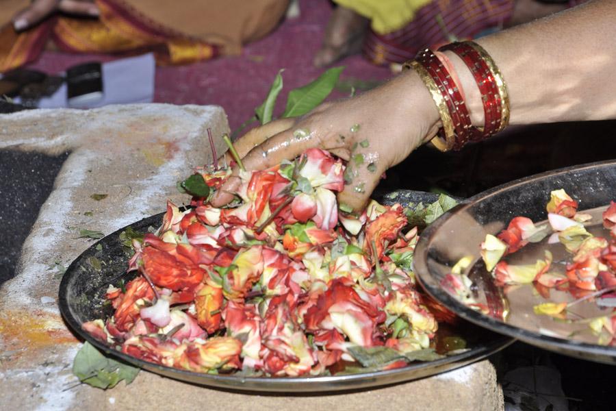 Maha Shivratri Special Maha Pasupatha Homam 2013 (14)