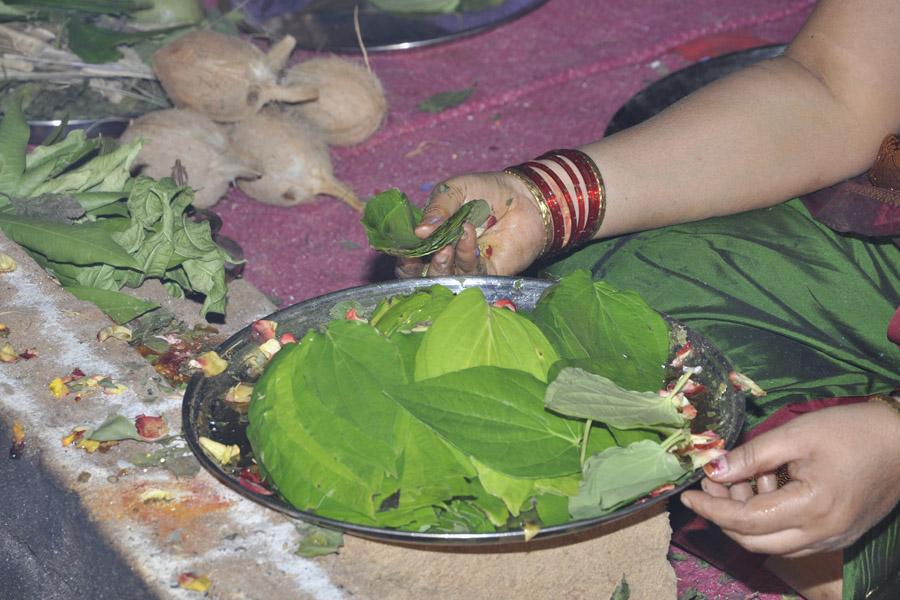 Maha Shivratri Special Maha Pasupatha Homam 2013 (18)