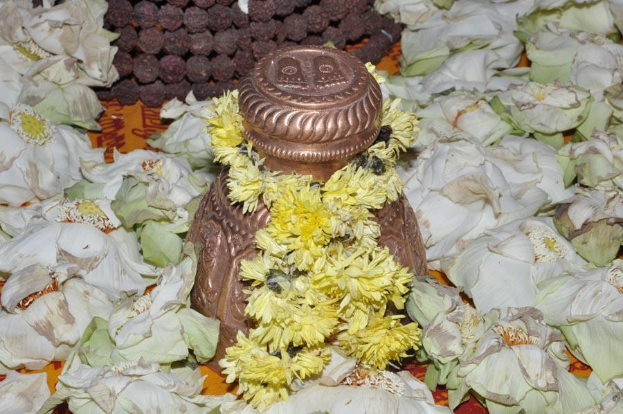 Mahapashupatha Homam 2013 (11)