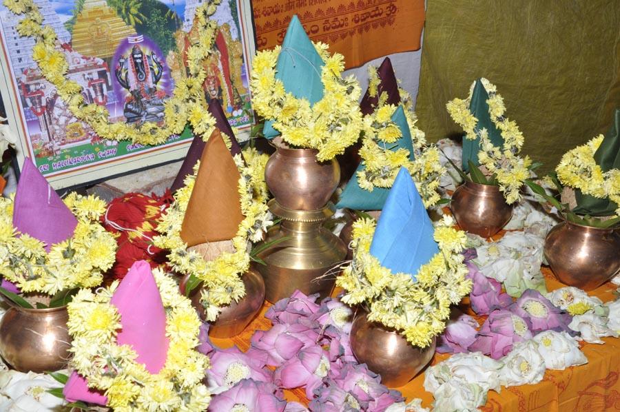 Mahapashupatha Homam 2013 (13)