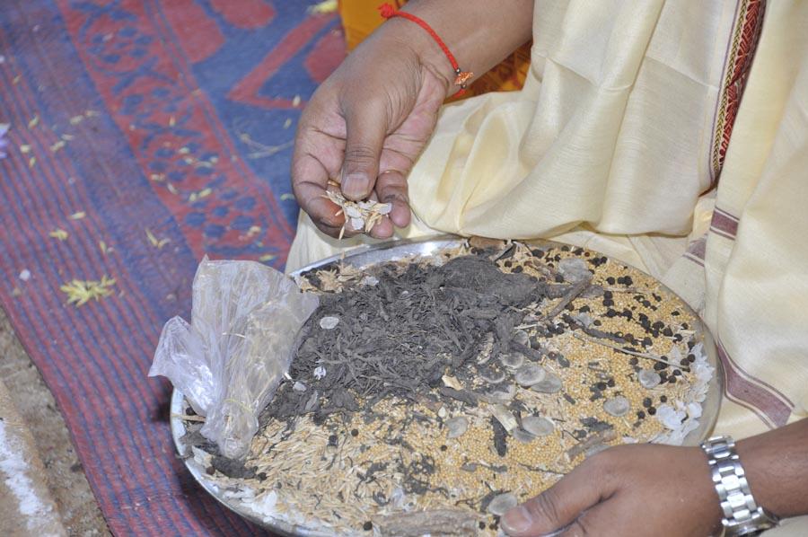 Mahapashupatha Homam 2013 (50)