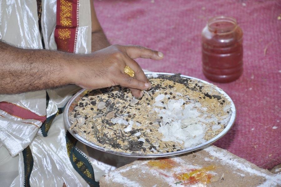 Mahapashupatha Homam 2013 (51)