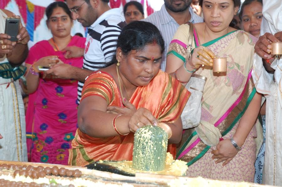 Maha Shivratri Special Maha Pasupatha Homam 2014 (108)