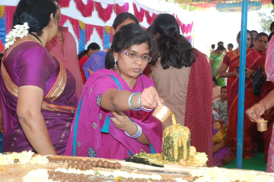 Maha Shivratri Special Maha Pasupatha Homam 2014 (129)