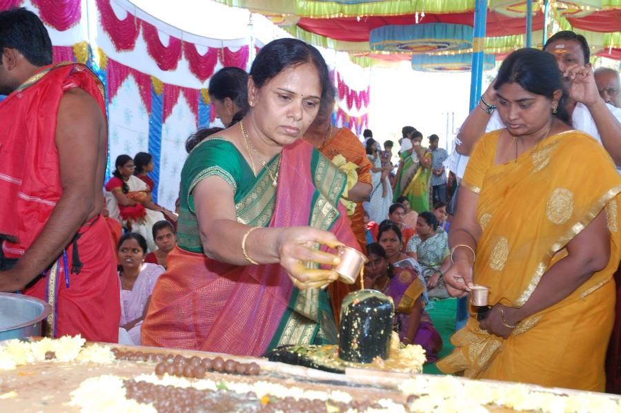 Maha Shivratri Special Maha Pasupatha Homam 2014 (136)