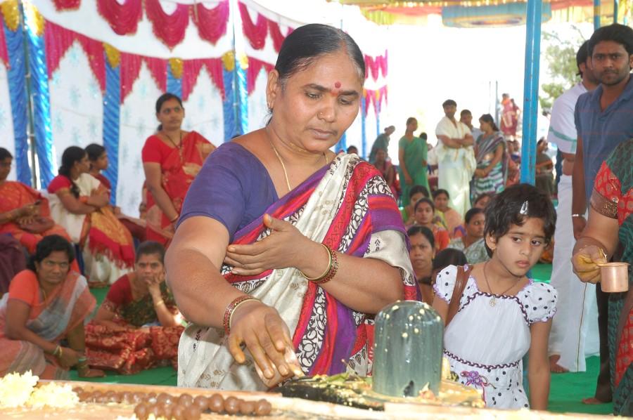 Maha Shivratri Special Maha Pasupatha Homam 2014 (159)