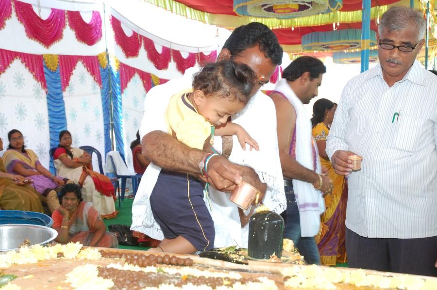 Maha Shivratri Special Maha Pasupatha Homam 2014 (167)