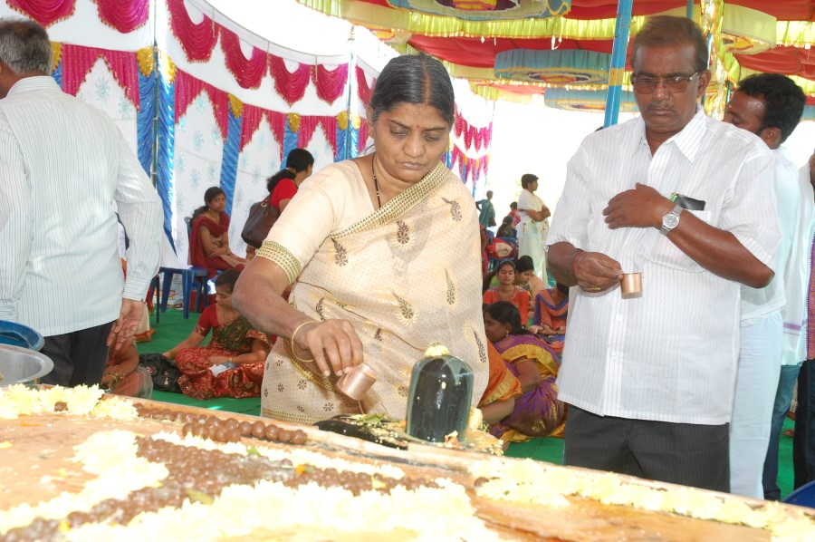 Maha Shivratri Special Maha Pasupatha Homam 2014 (169)