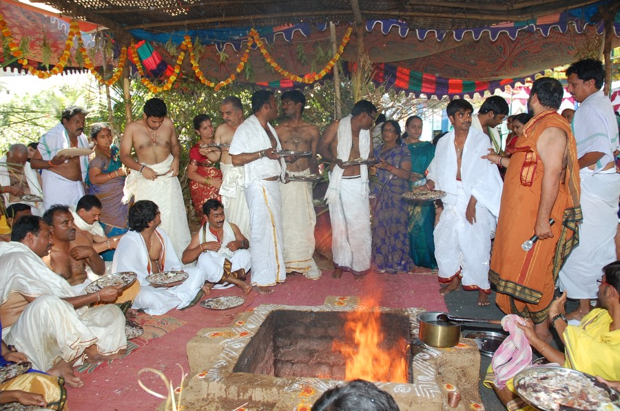 Maha Shivratri Special Maha Pasupatha Homam 2014 (186)