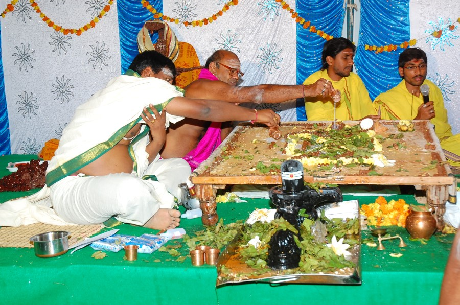 Maha Shivratri Special Maha Pasupatha Homam 2014 (189)