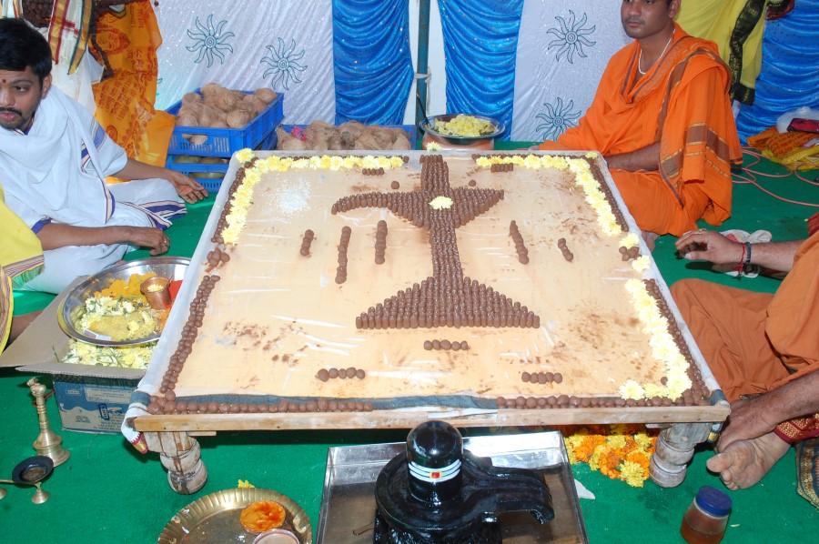 Maha Shivratri Special Maha Pasupatha Homam 2014 (19)