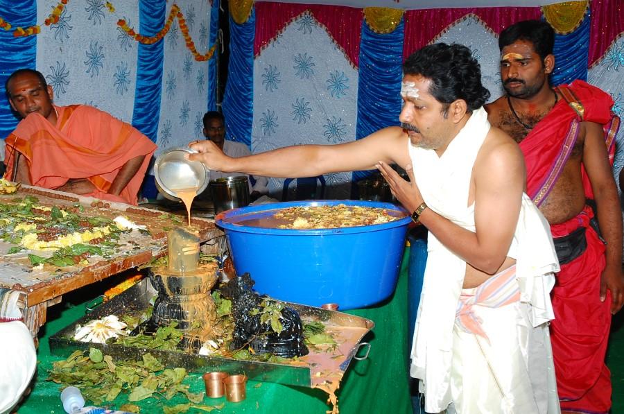 Maha Shivratri Special Maha Pasupatha Homam 2014 (190)