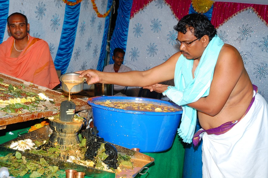 Maha Shivratri Special Maha Pasupatha Homam 2014 (196)