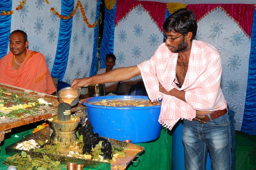 Maha Shivratri Special Maha Pasupatha Homam 2014 (197)