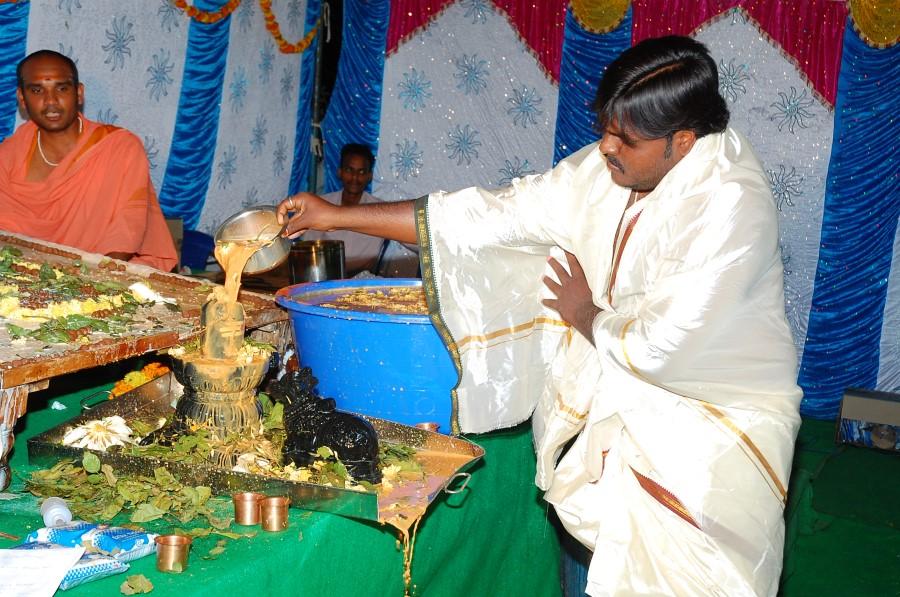 Maha Shivratri Special Maha Pasupatha Homam 2014 (201)