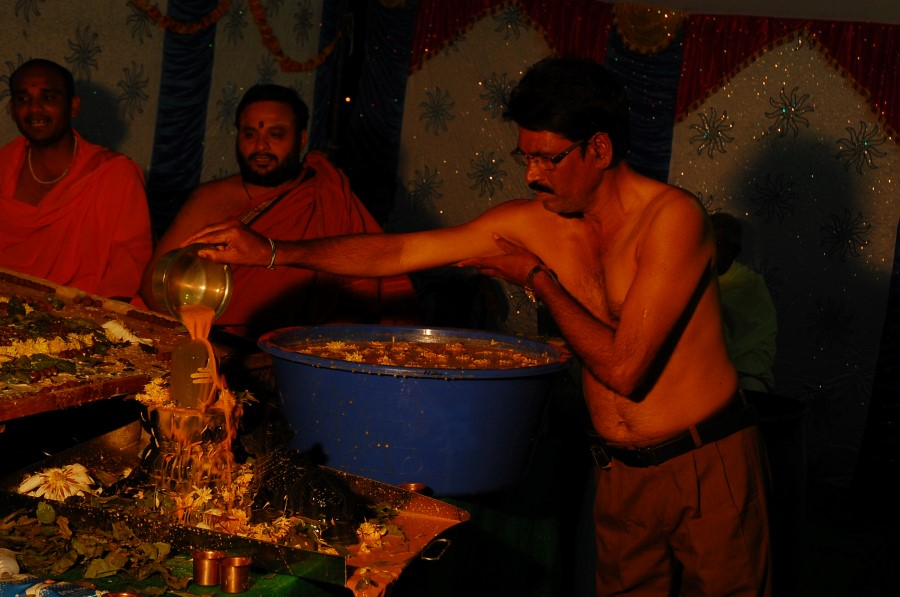 Maha Shivratri Special Maha Pasupatha Homam 2014 (206)
