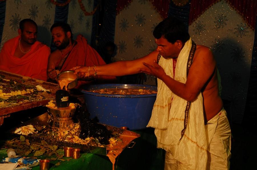 Maha Shivratri Special Maha Pasupatha Homam 2014 (208)