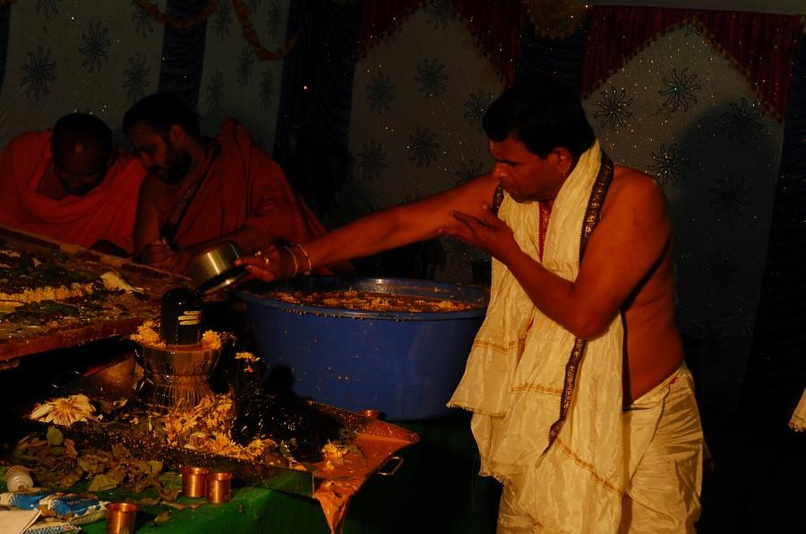 Maha Shivratri Special Maha Pasupatha Homam 2014 (209)