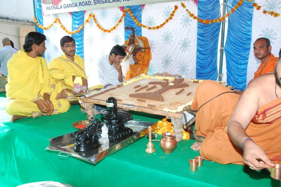 Maha Shivratri Special Maha Pasupatha Homam 2014 (21)
