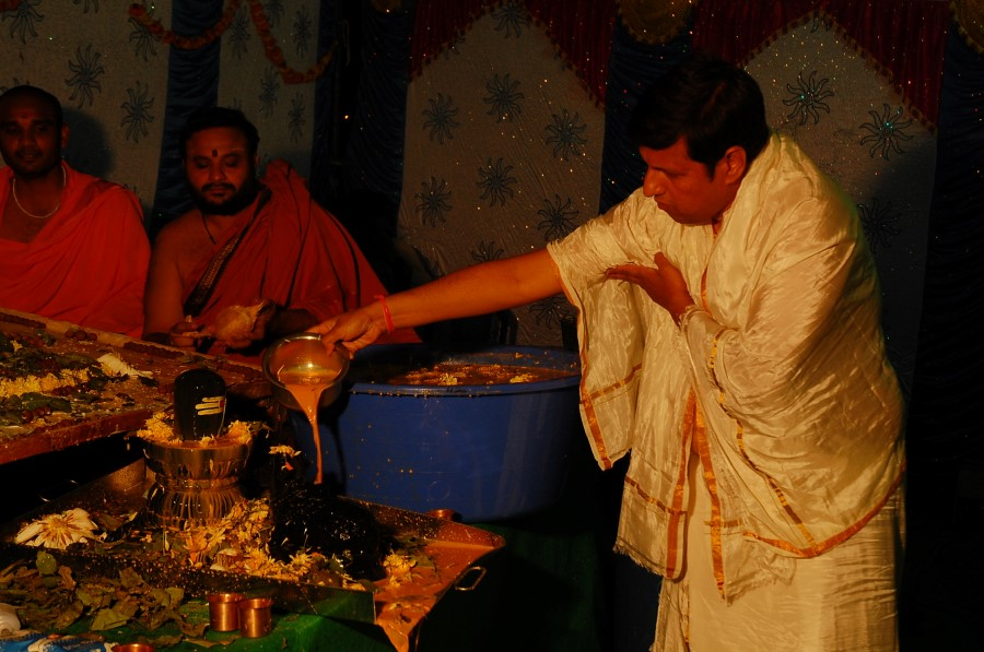 Maha Shivratri Special Maha Pasupatha Homam 2014 (210)