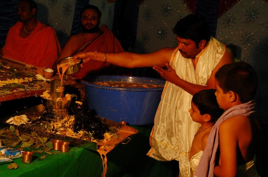 Maha Shivratri Special Maha Pasupatha Homam 2014 (211)