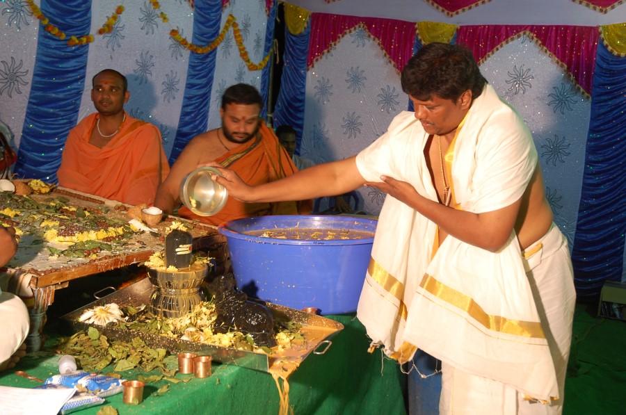 Maha Shivratri Special Maha Pasupatha Homam 2014 (213)