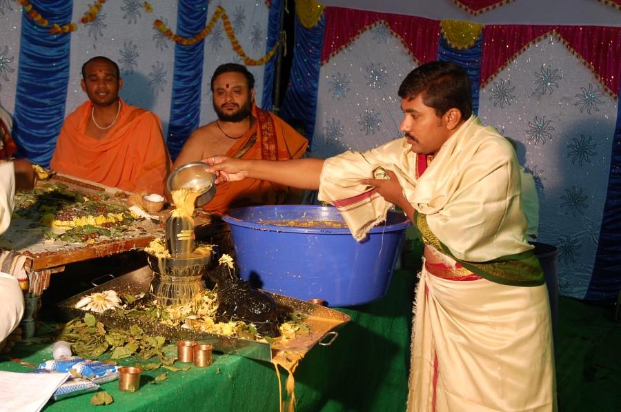 Maha Shivratri Special Maha Pasupatha Homam 2014 (215)