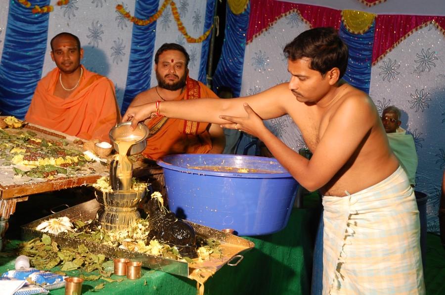 Maha Shivratri Special Maha Pasupatha Homam 2014 (216)
