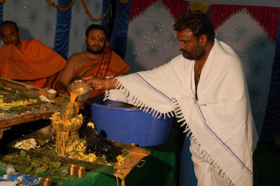 Maha Shivratri Special Maha Pasupatha Homam 2014 (219)