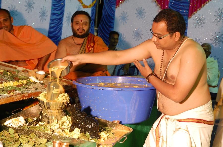 Maha Shivratri Special Maha Pasupatha Homam 2014 (224)