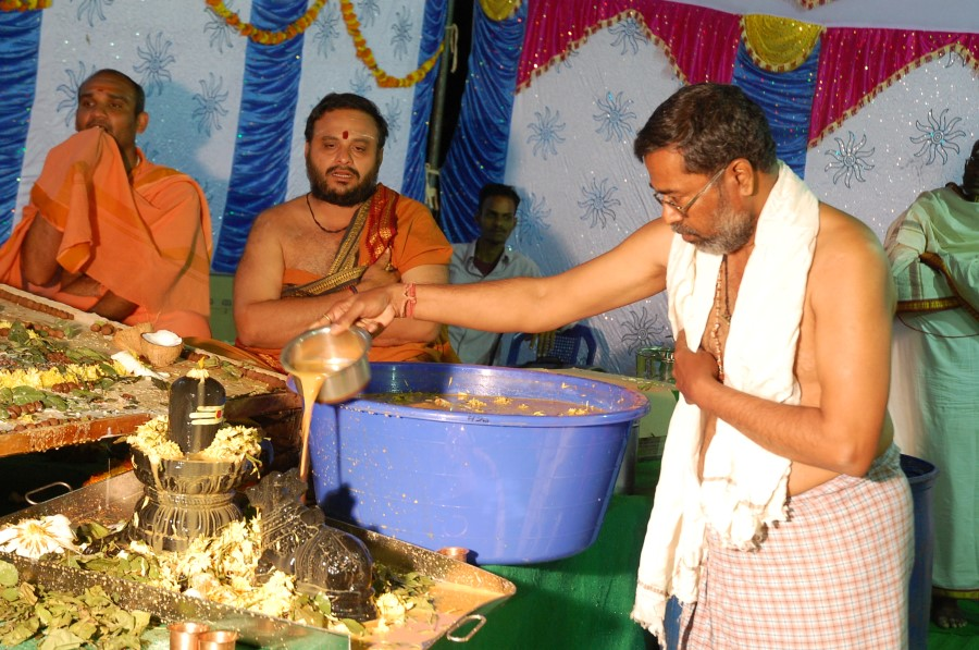 Maha Shivratri Special Maha Pasupatha Homam 2014 (226)