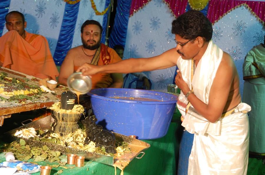Maha Shivratri Special Maha Pasupatha Homam 2014 (229)