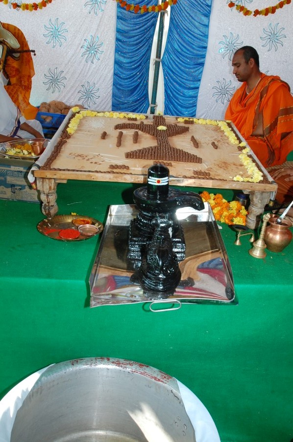 Maha Shivratri Special Maha Pasupatha Homam 2014 (23)
