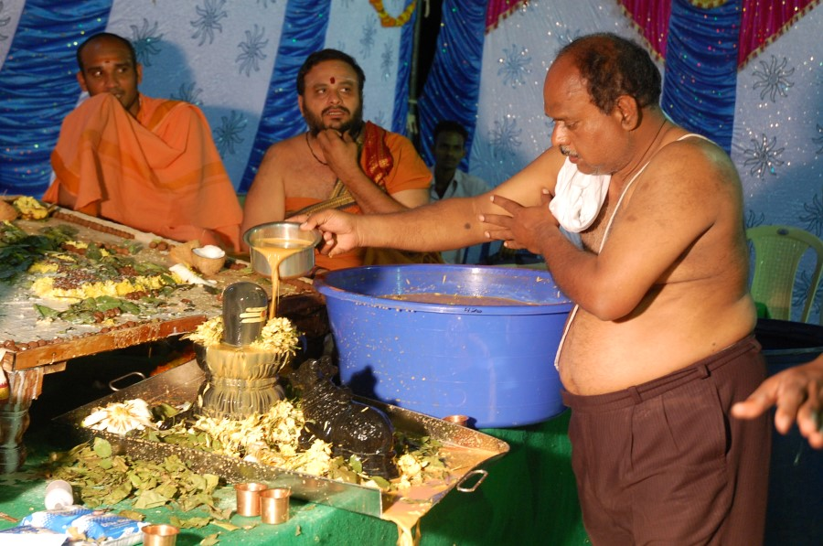 Maha Shivratri Special Maha Pasupatha Homam 2014 (232)