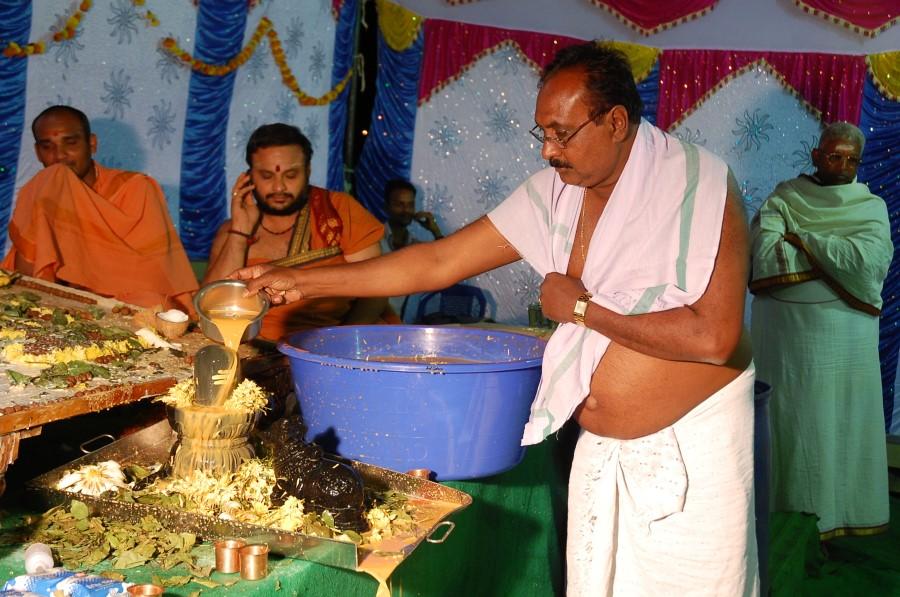 Maha Shivratri Special Maha Pasupatha Homam 2014 (233)