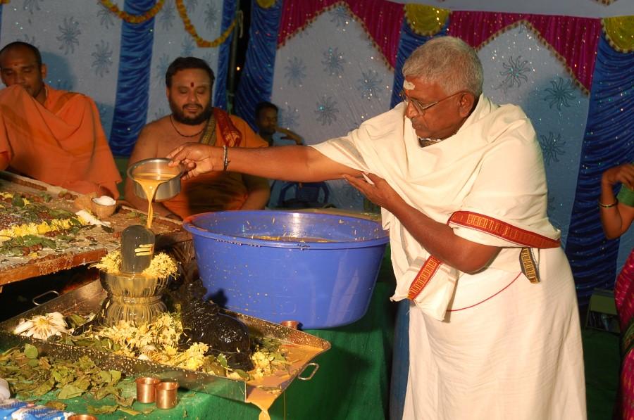Maha Shivratri Special Maha Pasupatha Homam 2014 (235)