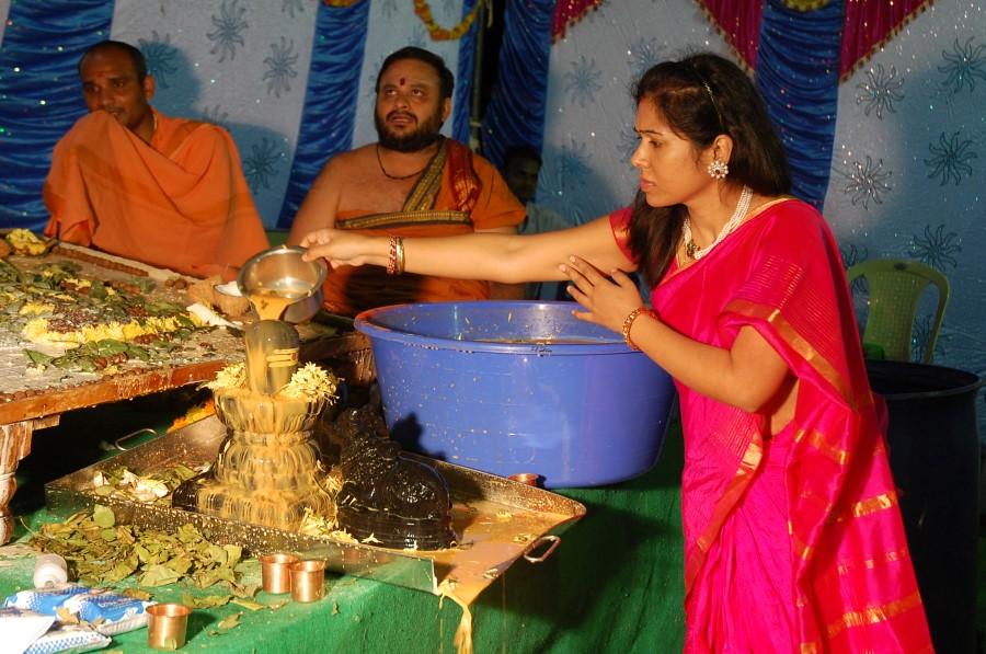 Maha Shivratri Special Maha Pasupatha Homam 2014 (237)