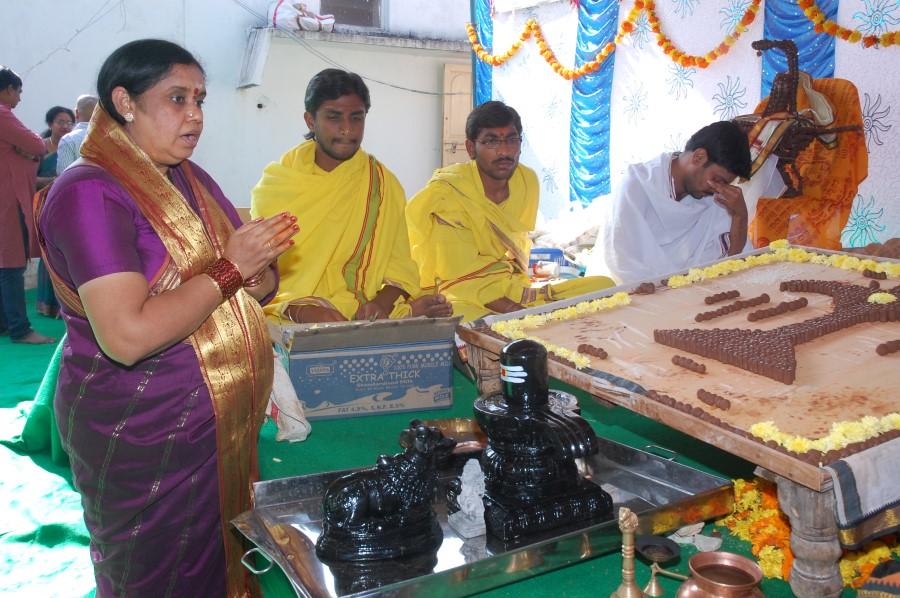 Maha Shivratri Special Maha Pasupatha Homam 2014 (24)