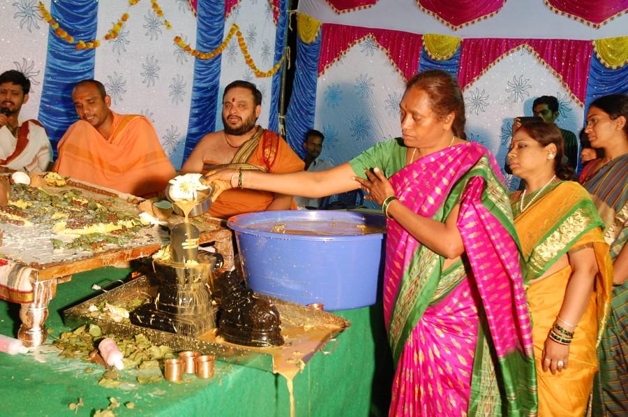 Maha Shivratri Special Maha Pasupatha Homam 2014 (241)