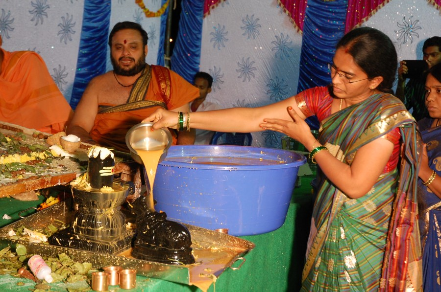 Maha Shivratri Special Maha Pasupatha Homam 2014 (243)