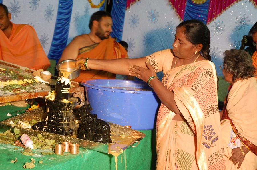 Maha Shivratri Special Maha Pasupatha Homam 2014 (246)