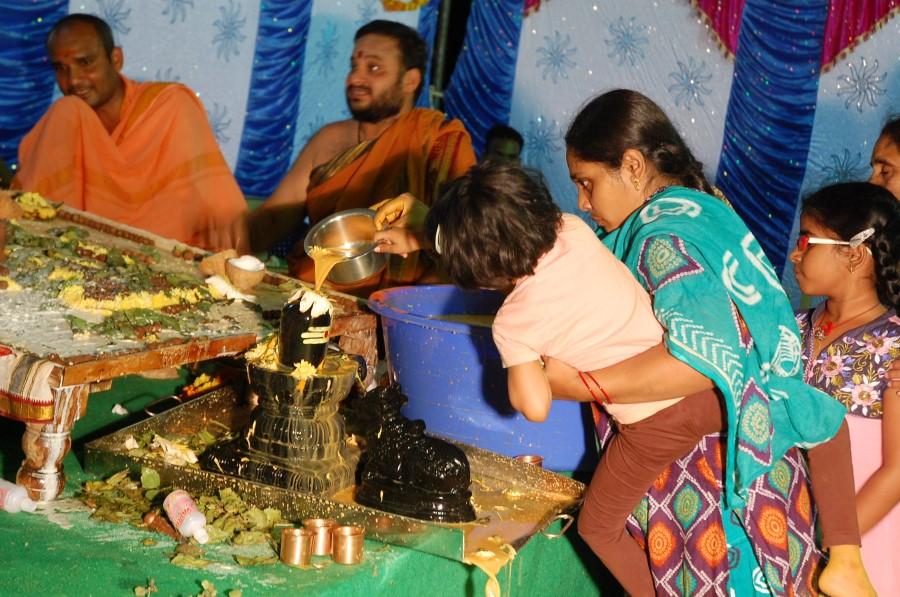 Maha Shivratri Special Maha Pasupatha Homam 2014 (249)
