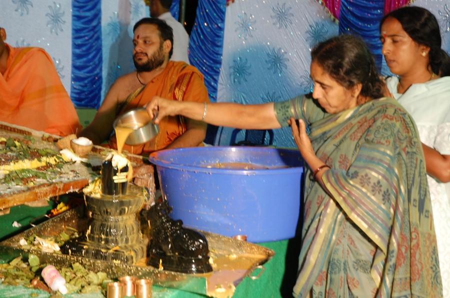 Maha Shivratri Special Maha Pasupatha Homam 2014 (251)