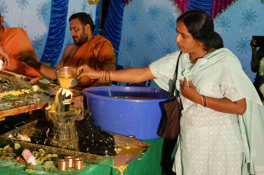 Maha Shivratri Special Maha Pasupatha Homam 2014 (252)