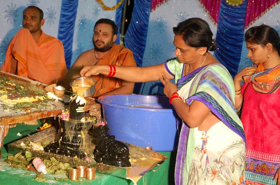 Maha Shivratri Special Maha Pasupatha Homam 2014 (254)