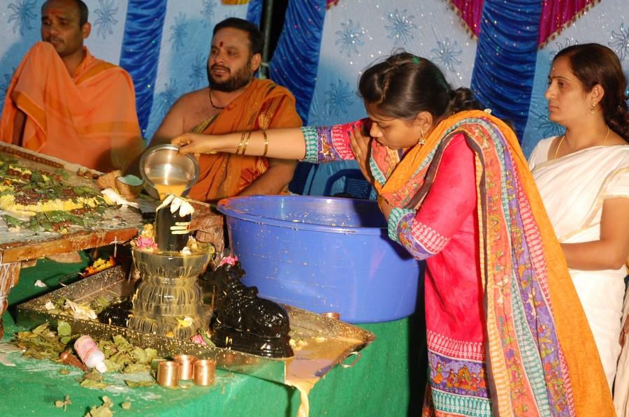 Maha Shivratri Special Maha Pasupatha Homam 2014 (255)